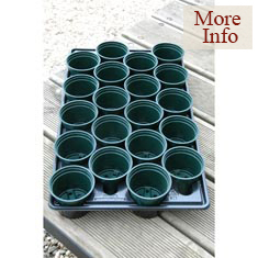 Pots in Carry Trays